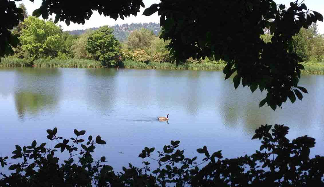 duck trail