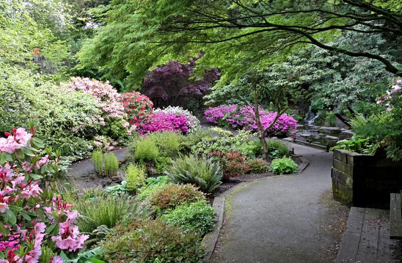 Crystal Springs Garden