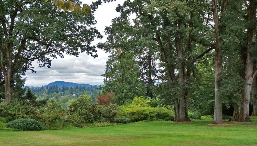 View from Elk Rock Garden