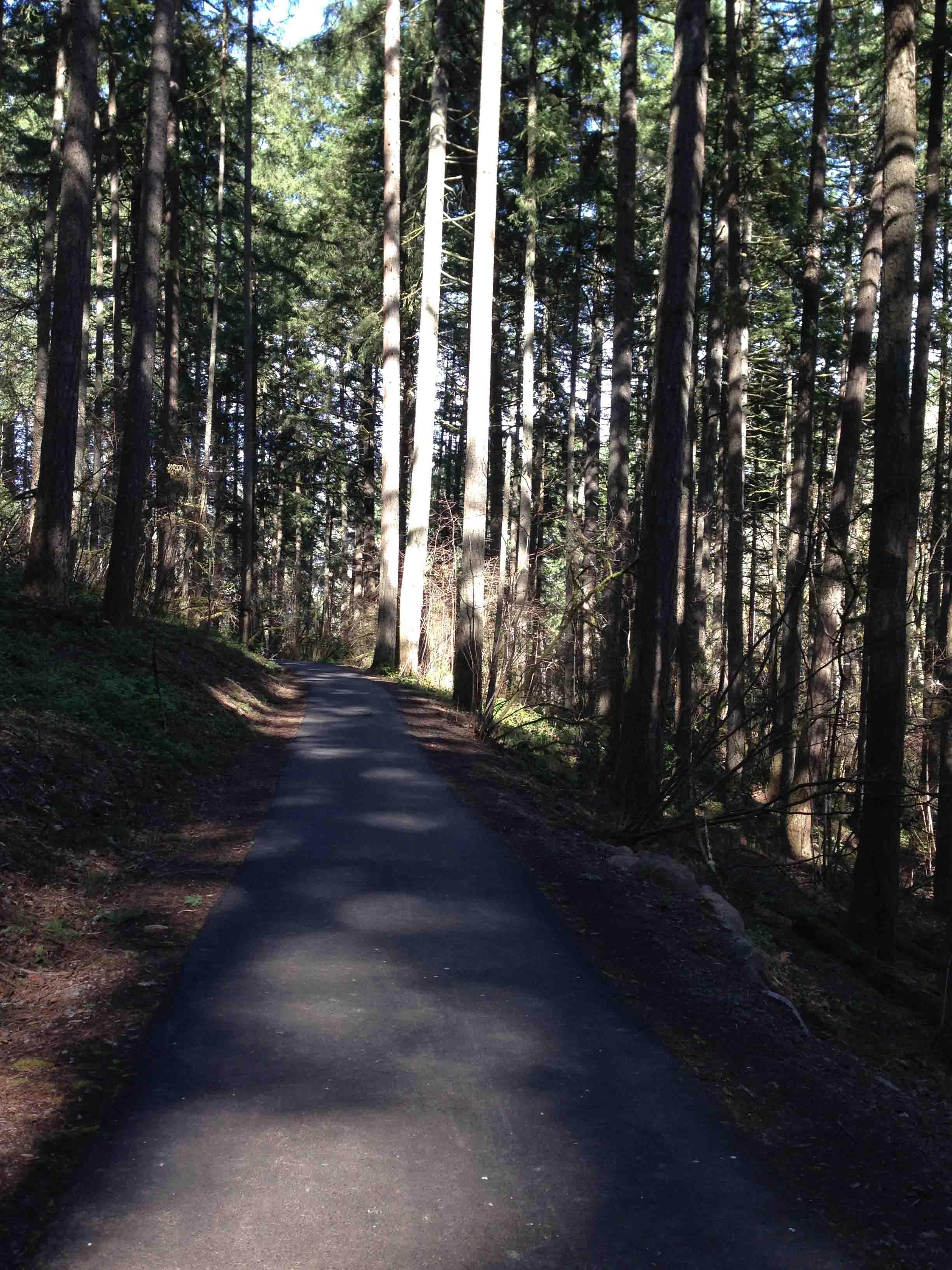 Lowami Hart Path