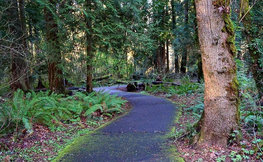 Tualatin Hills Nature Park