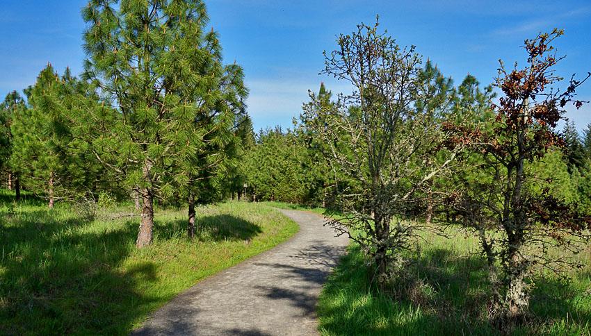 Cooper Mountain Nature Park