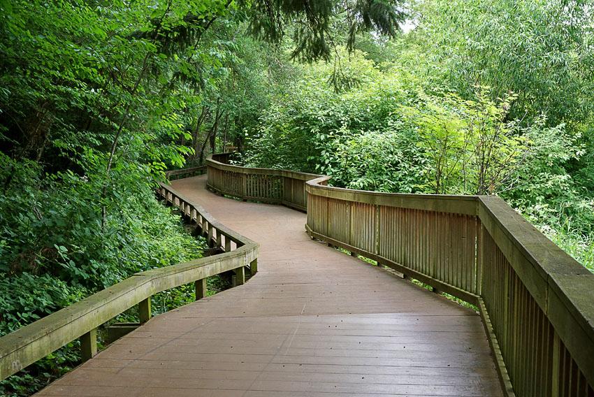 Willow Creek Park boardwalk