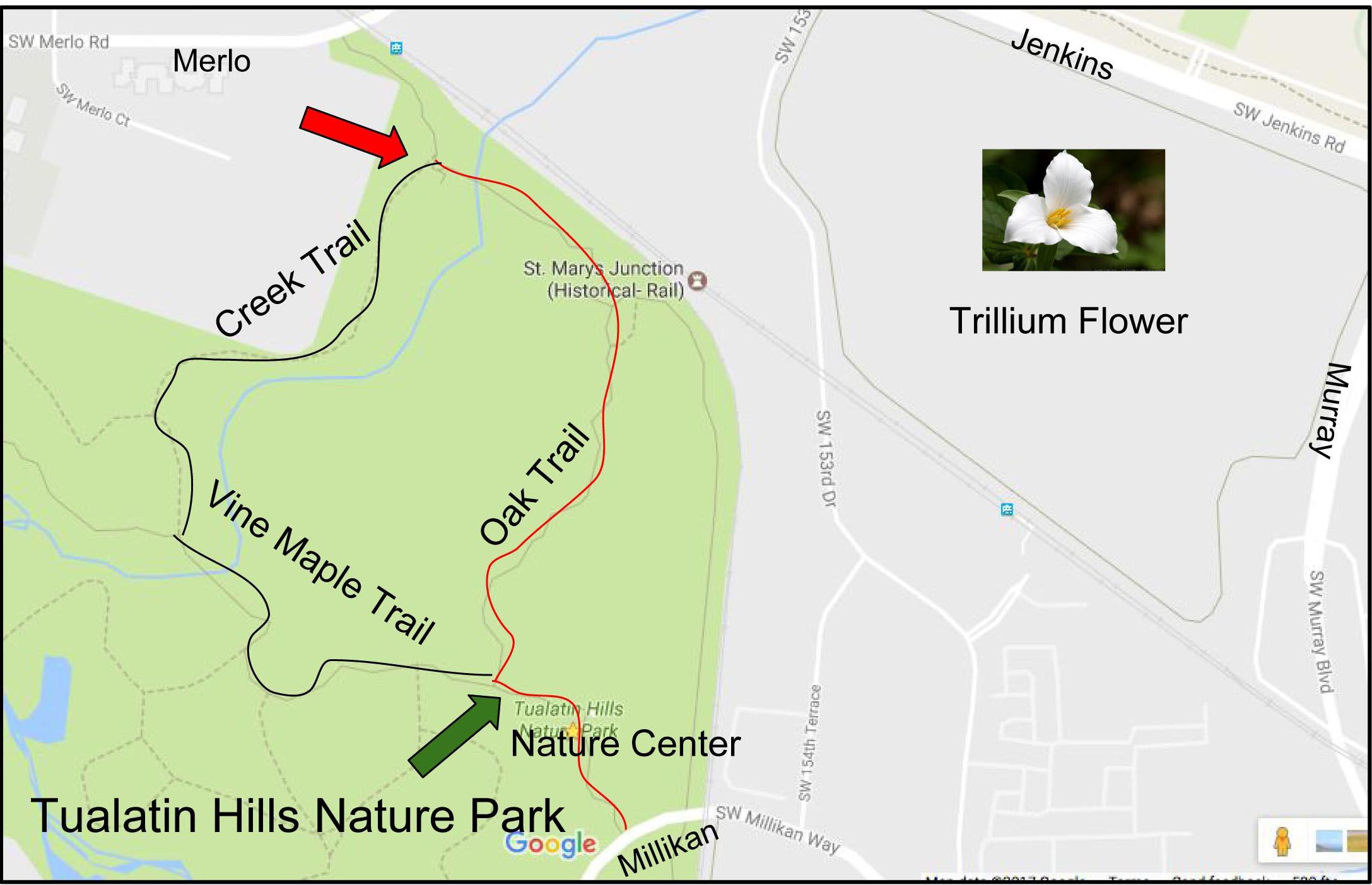 Nature walk map