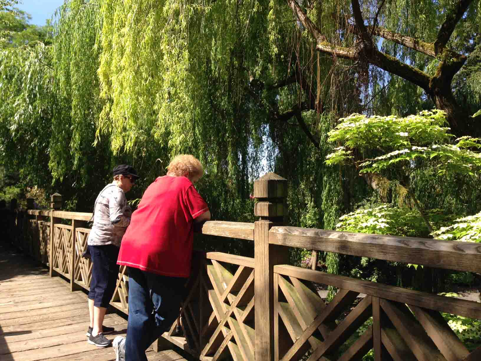Villagers enjoy view from the bridge