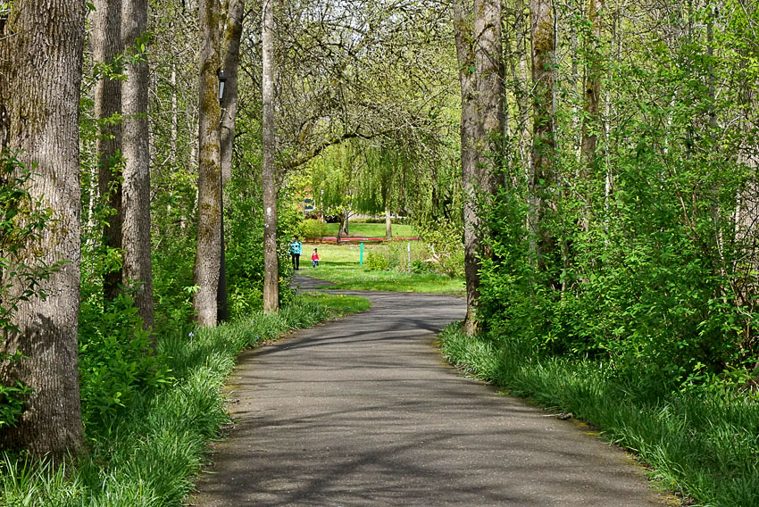 Waterhouse Park trail