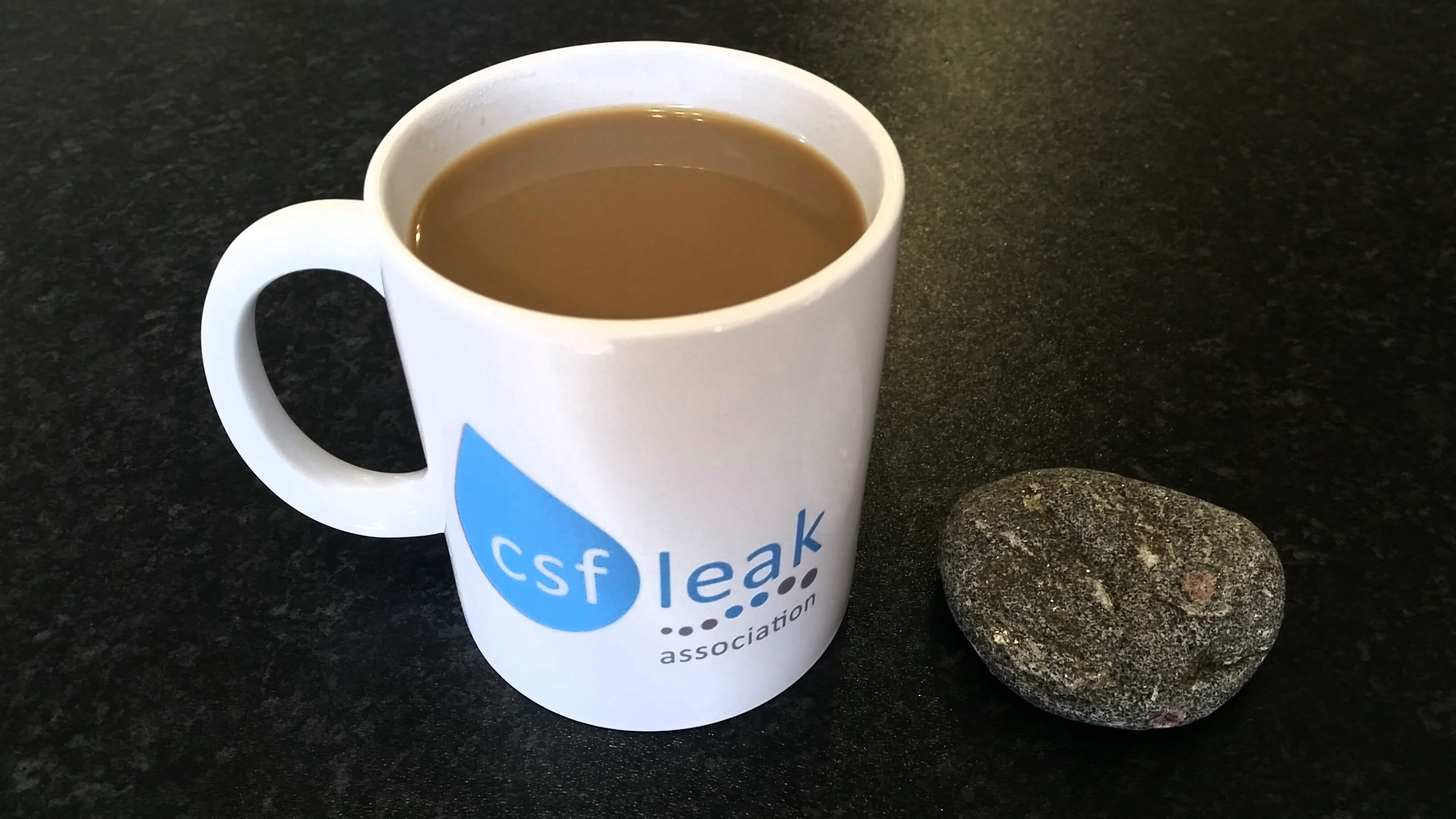 CSF Leak Association Mug