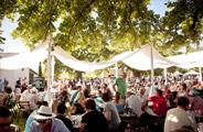 WELLINGTON HARVEST FESTIVAL Report 2014