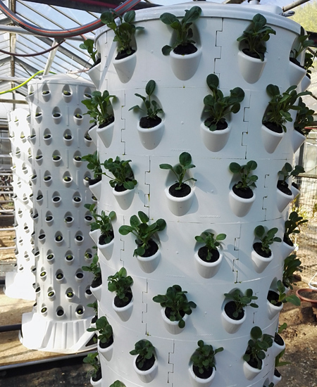 One centered 3-inch net pot insert, can be alternated with the closed part for even bigger plants.