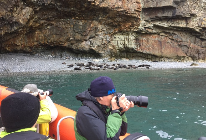 Photographers get close to seals with Falcon Boats