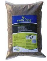 Earth Zing