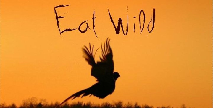 Eat Wild at Polo