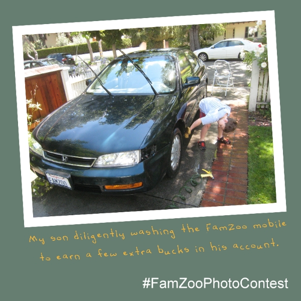 FamZoo Photo Contest Sample Entry