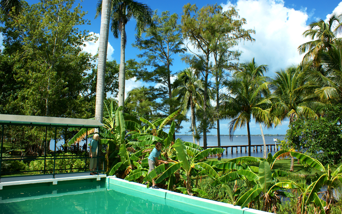 PoolRiver copy NEW Garden & Estates Tour at the Edison & Ford Winter Estates