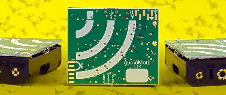 AudioMoth Shipping Updates