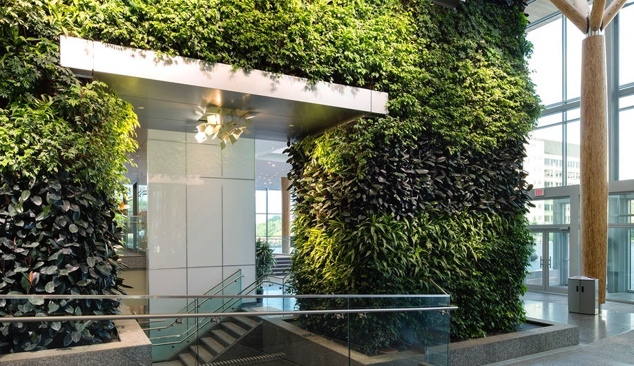 Living Walls Breathe New Life into Everyday Spaces