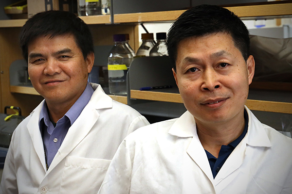 NCI Cancer Moonshot grant supports new approach to boost immunotherapies at Massey