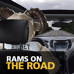 Rams on the Road