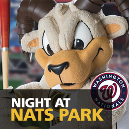 Night At Nats Park