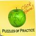 Puzzles of Practice