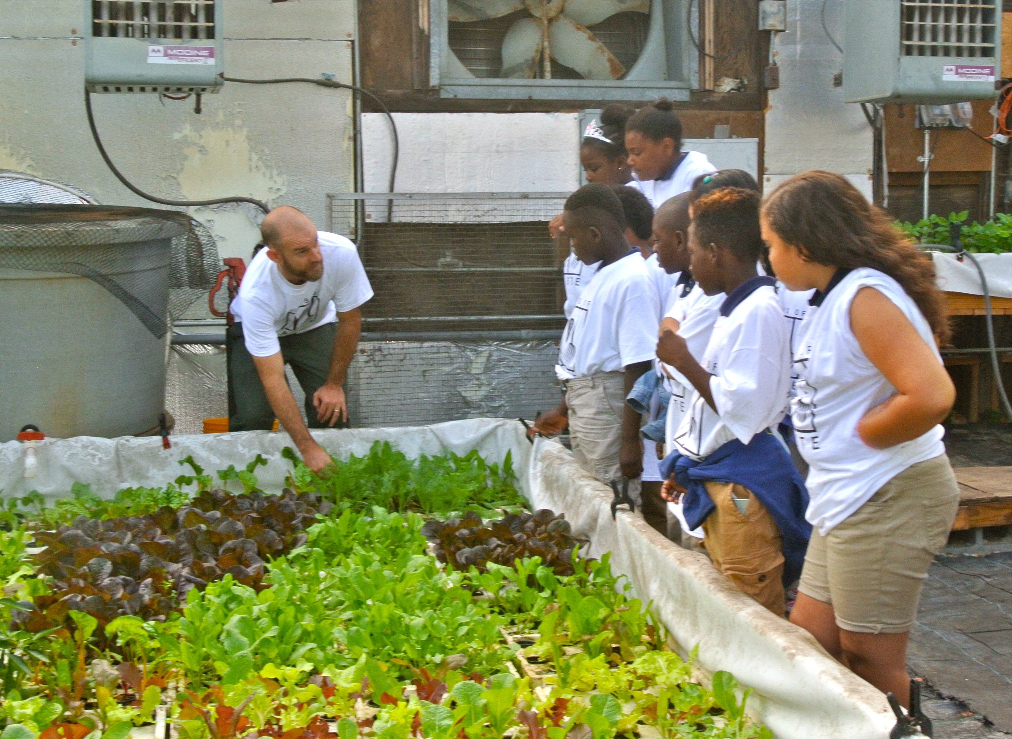 Barclay Days of Taste students visiting The Johns Hopkins Food System Lab @ Cylburn, learning about aquaponics, a system of agriculture that combines fish farming with hydroponic plant farming, from Farm Manager Jesse Blom.
