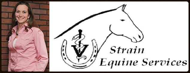 Strain Equine Services