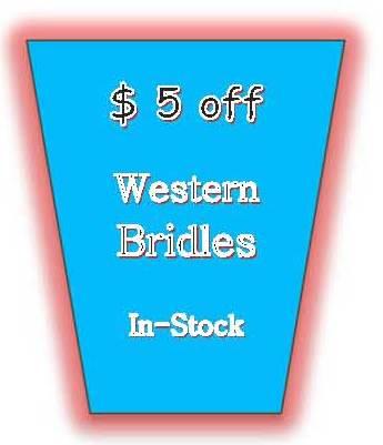 SpecTACKular Western Headstall Bridles in BioThane Beta