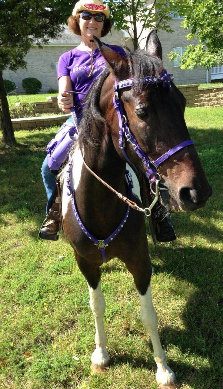 Stetson in SpecTACKular Horse Tack