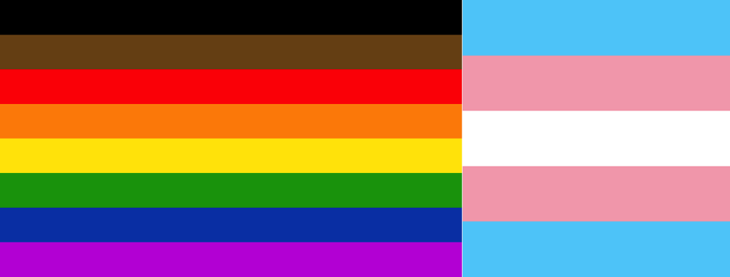 Image with the rainbow Pride flag including black and brown stripes on the left and the trans-pride flag on the right