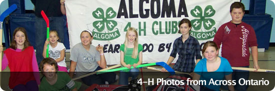 4-H Photos from Across the Province