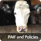 Livestock PAIF and Policies