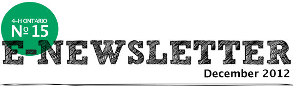 December 2012 E-Newsletter