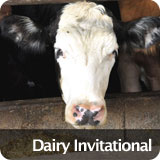 Dairy Invitational
