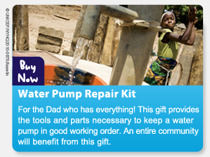 Water Pump Repair Kit - For the Dad who has everything! This gift providesthe tools and parts necessary to keep a water pump in good working order. An entire community will benefit from this gift. BUY NOW>