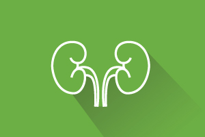 Kidney illustration (LEOcrafts/DigitalVision Vectors/Getty Images)