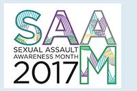 SAAM 2017 logo