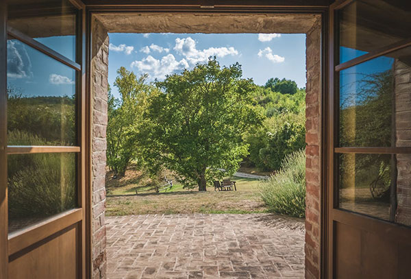 a view through a door to a patio and a tree