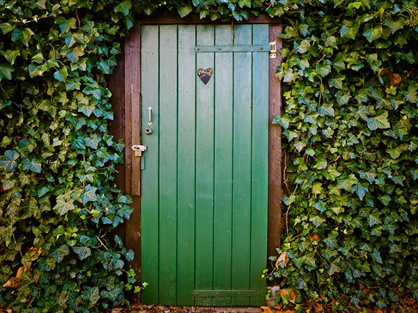 a green door surrounded by ivy