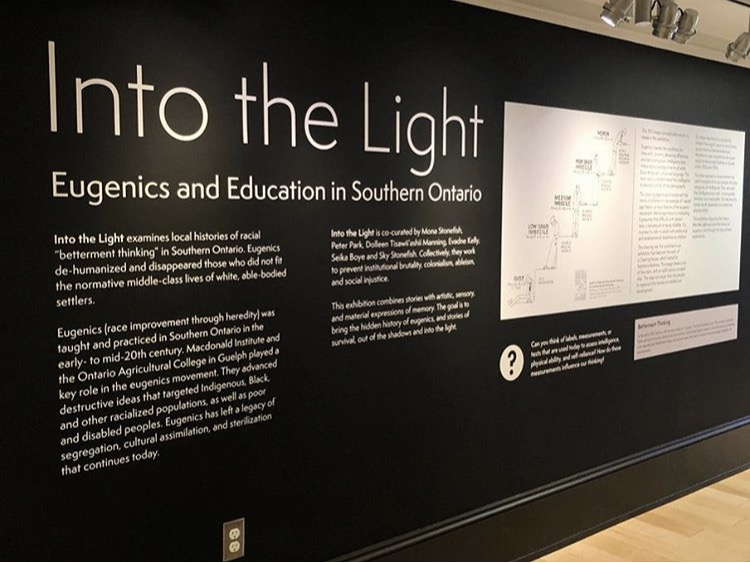 """A photo of the """"Into the Light sign on the wall outside the exhibit space. which has white text on a black background."""