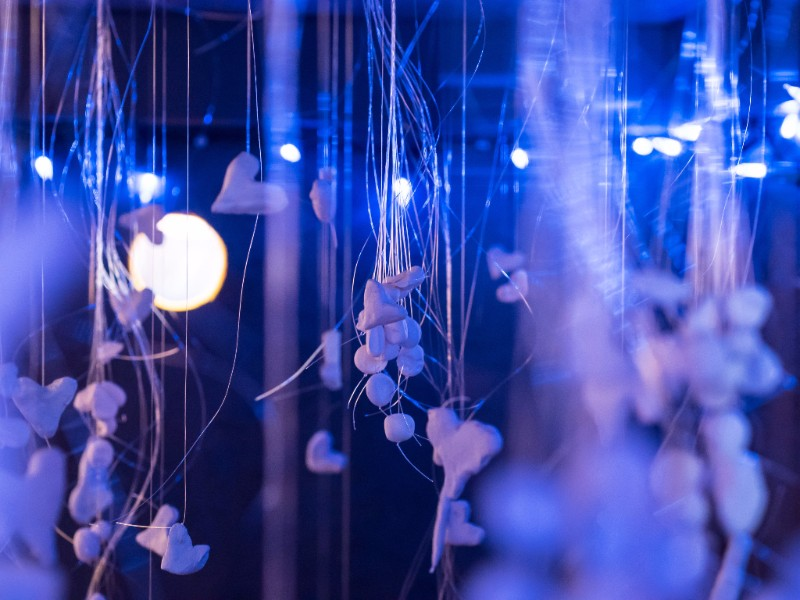 Interior view of installation illuminated by blue purple light and filled with small tooth-like clay shapes suspended with fishing wire.