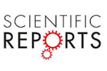 Image result for scientific reports logo
