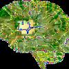 Anatomy, Biology, Brain, Thought, Mind