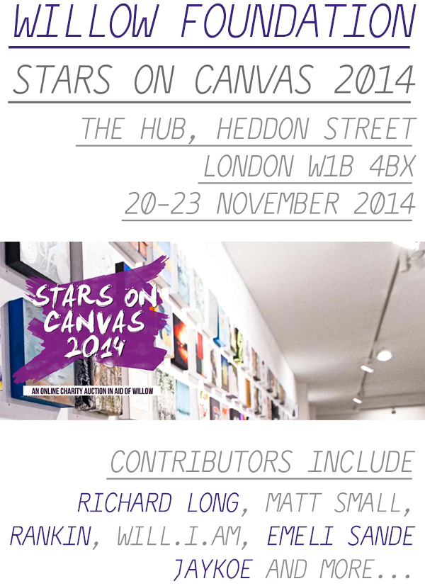Willow Foundation - Stars on Canvas 2014