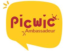 Picwic Ambassadeur