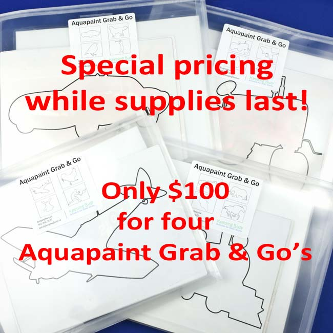 Aquapaint Bundle