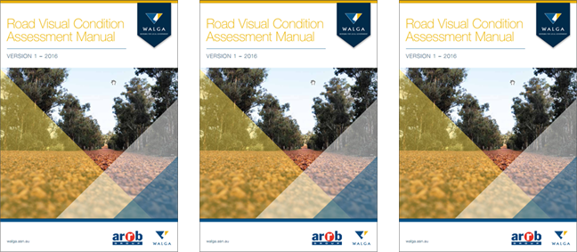 Road Visual Condition Assessment Manual