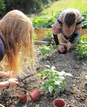 RSPB partners with Green Impact Excellence