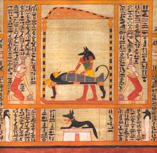 Anubis embalming someone