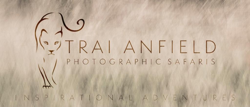 Trai Anfield Photographic Safaris logo