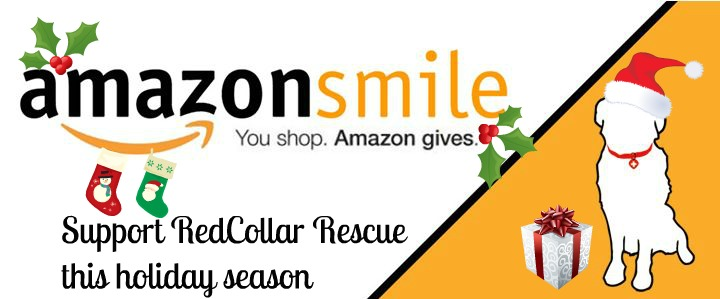 Red Collar Rescue on Amazon Smile
